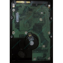 HP 454228-001 146Gb 15k SAS HDD (Киров)